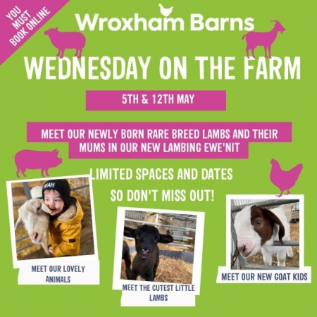 Wednesday on the farm